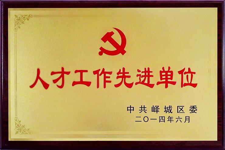 中共峄城区委颁发:人才工作先进单位