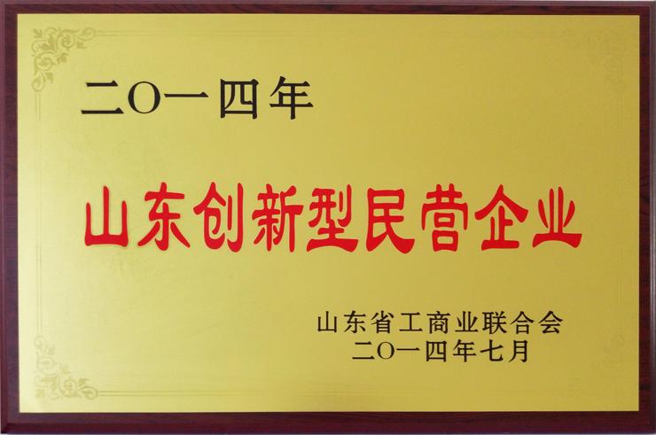 山东工商业联合会颁发:山东创新型民营企业
